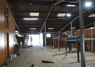 Agron-LED Queenholme Equestrian project 3