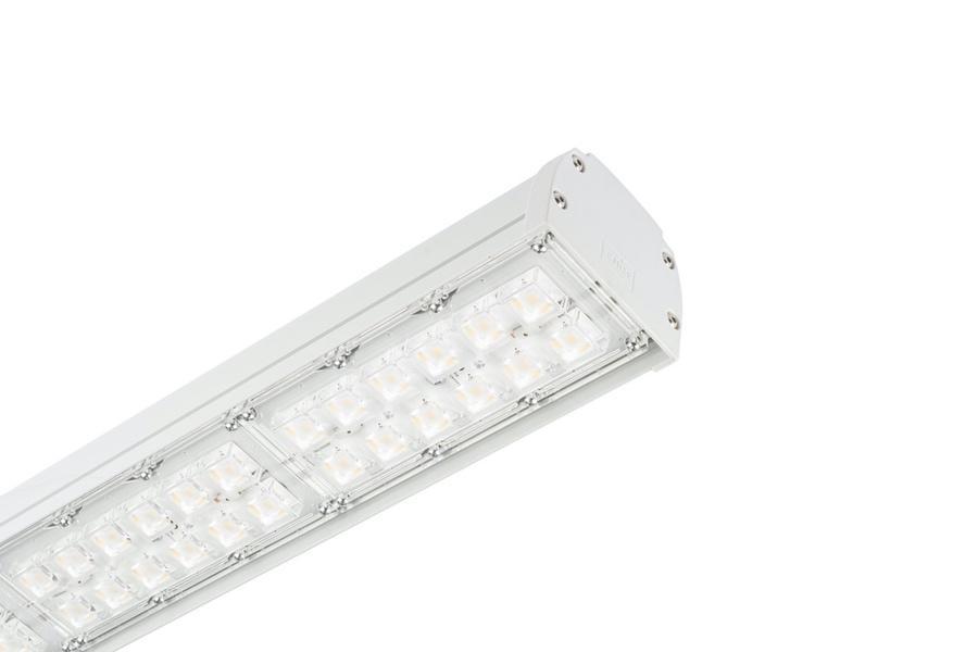 Focas Lainnir - Agron-LED 02